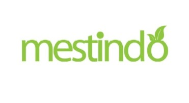 lowongan head accounting mesty-indonesiy mestindo
